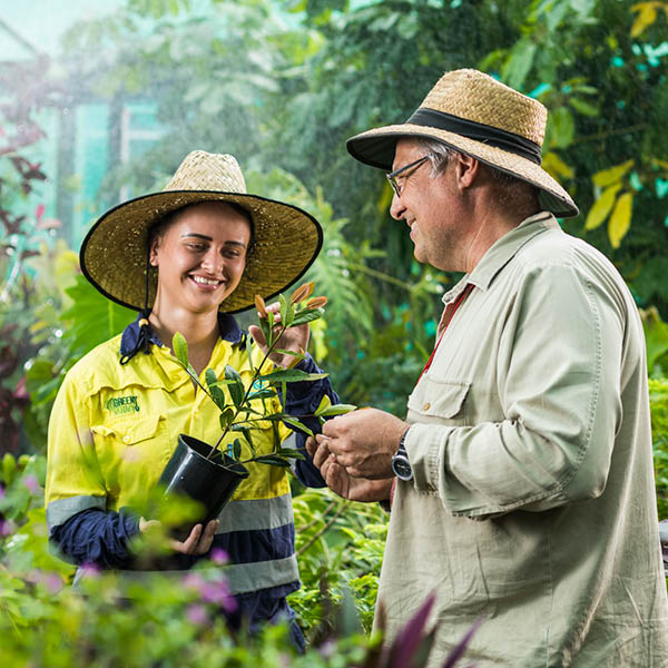 study horticulture with tafe queensland