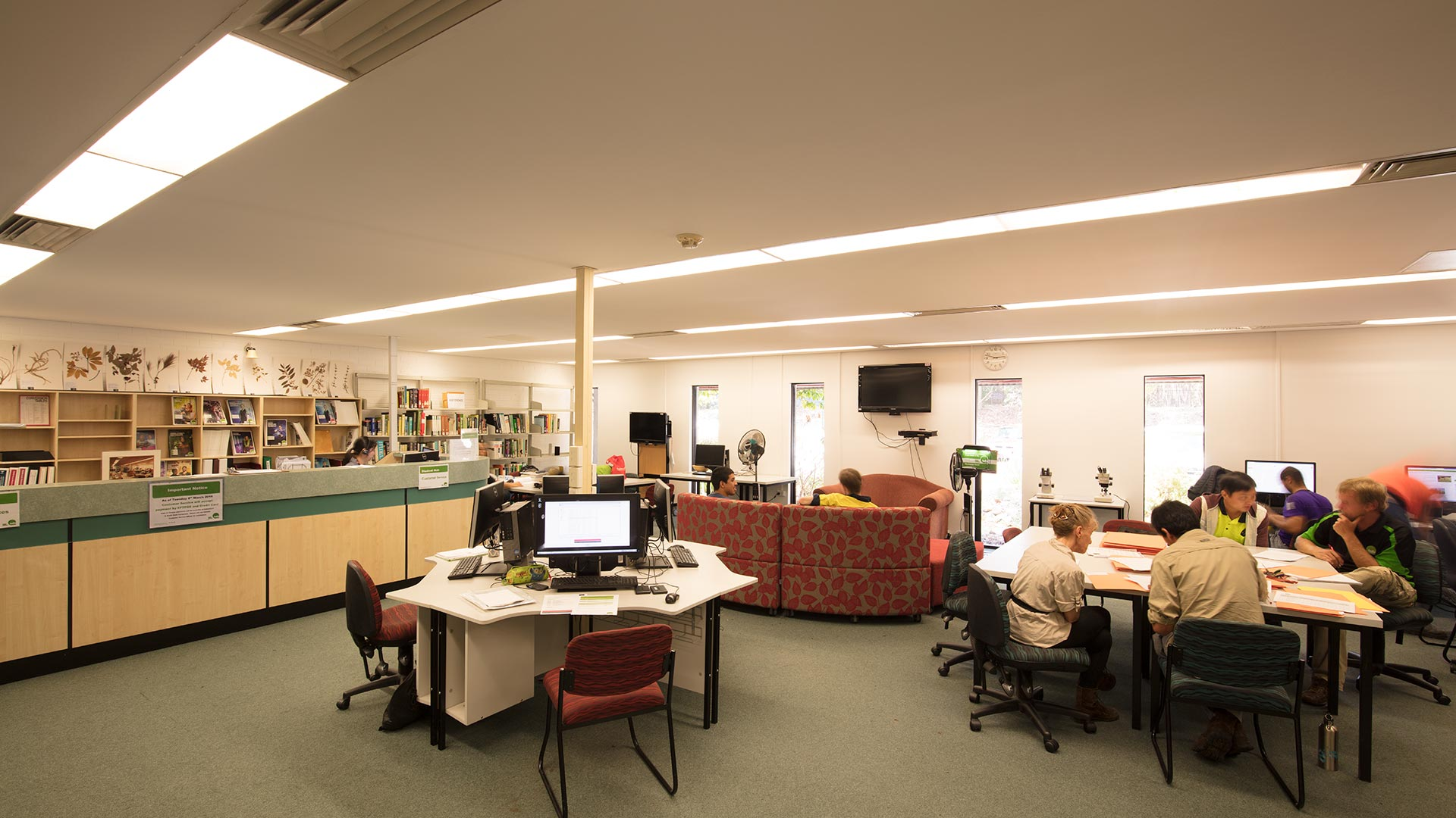 grovely-facilities-libraries-01.jpg